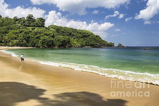 Rainforest Beach by Hugh Stickney