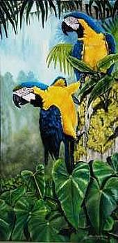 Rainforest Jewels by Syndi Michael