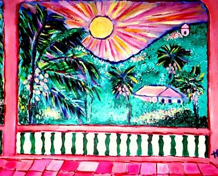 Rainforest Sunset by Ted Hebbler