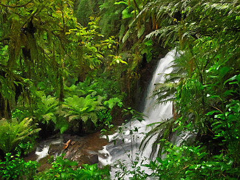 Rainforest Waterfall by Dale Jackson