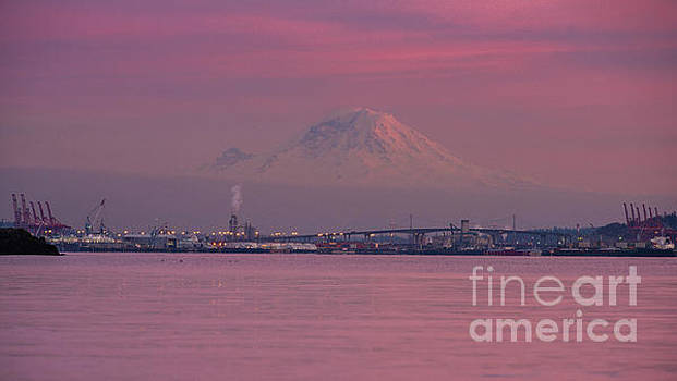 Rainier Dusk Reflection by Mike Reid