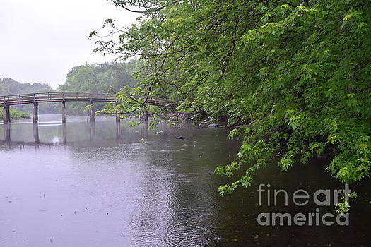 Raining Afternoon Along the Concord River by Leslie M Browning