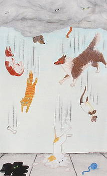 Raining Cats and Dogs by Michelle Miron-Rebbe