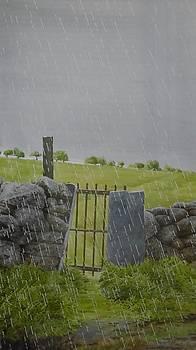 Raining in Gwynedd by Alwyn Dempster Jones