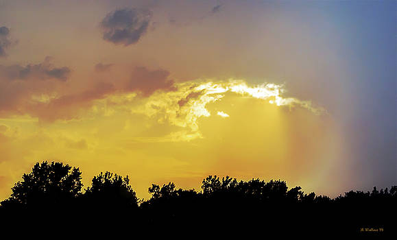 Raining Sunshine Silhouette by Brian Wallace