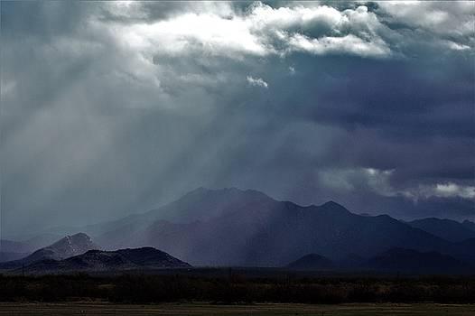 Rainrays by David S Reynolds