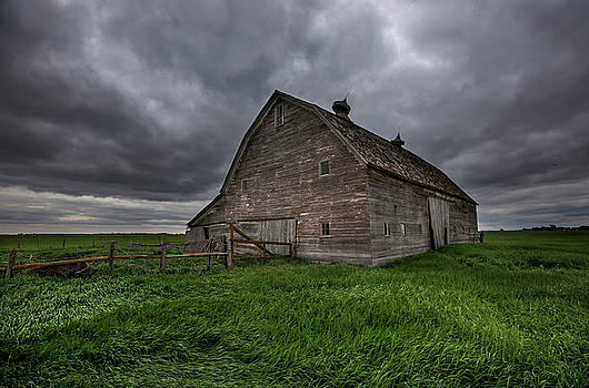 Rainy Day  by Aaron J Groen
