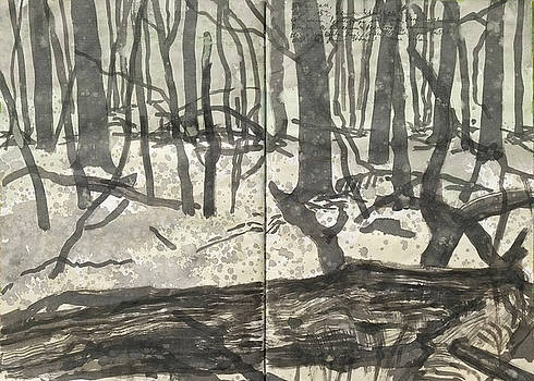 Martin Stankewitz - rainy day in the woods,ink drawing