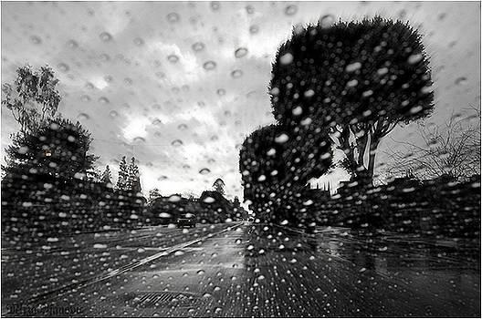 Rainy Day by Mirza Ajanovic