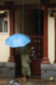 Rainy day by Vishakha Bhagat