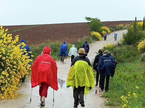 Rainy El Camino Day by Mike Shaw