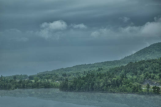 Elvira Pinkhas - Rainy Landscape