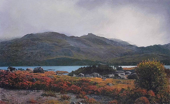 Rainy Loch Maree by Rodger Insh
