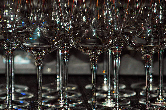 Raise a Glass by Alynne Landers