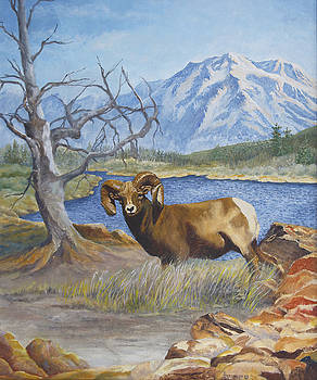 Ram Country by Ann Arensmeyer