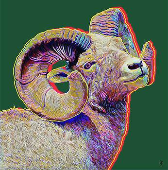Ram Head by Gary Grayson