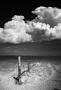 Ramona Monsoon Field by William Dunigan