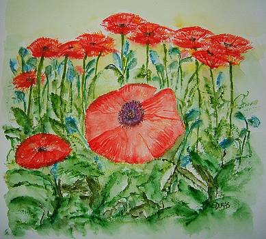 Ramonas Poppies by Elaine Duras