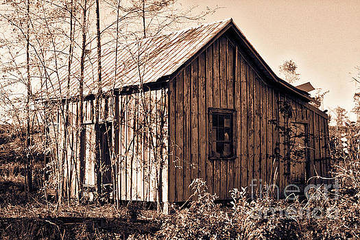 Ramshackle Sepia by Gregory Schultz