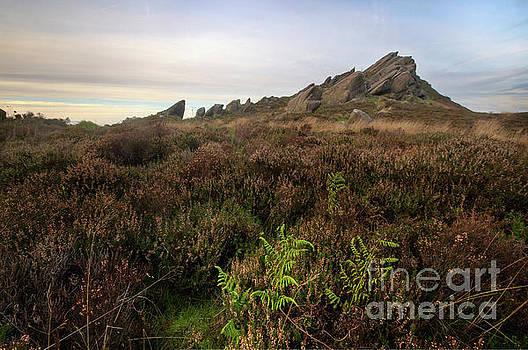 Yhun Suarez - Ramshaw Rocks 1.0