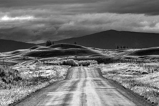 Ranch Road by Diana Marcoux