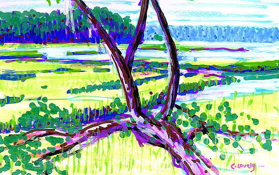 Randy and Carol's Marsh View by Candace Lovely