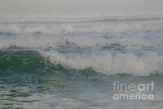 Rapid Waves by Iris Greenwell