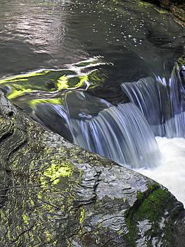 Rapids at Watkins Glen by Elizabeth Hoskinson