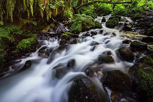 Rapids on Wahkeena creek by Hans Franchesco