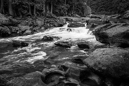 Rick Strobaugh - Rapids through the Forest BW