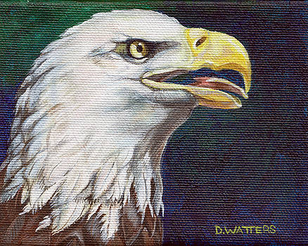 Raptor Attention by Darlene Watters
