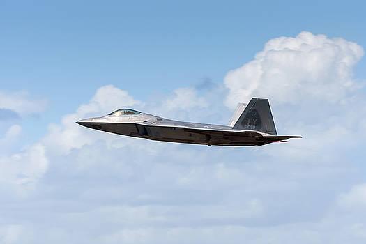 Raptor Takeoff by Chris Buff
