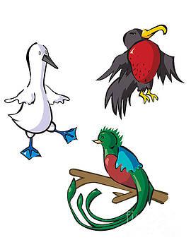 Rare Old Birds by Whitney Morton
