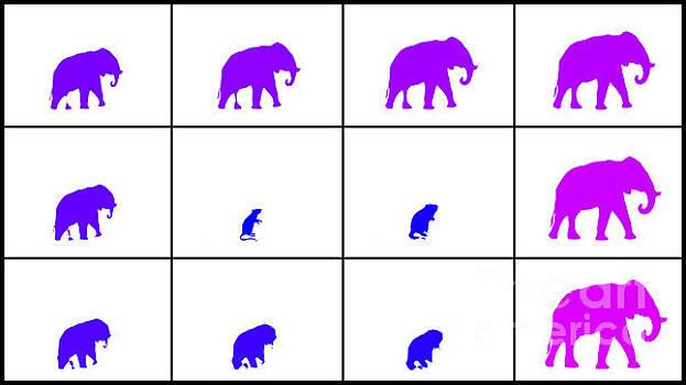 Rat to Elephant Evolve by Tin Tran