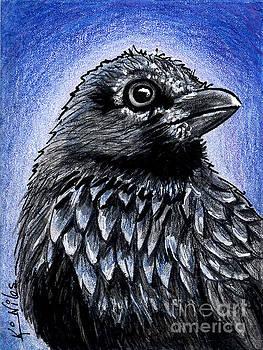 Raven by Kim Niles