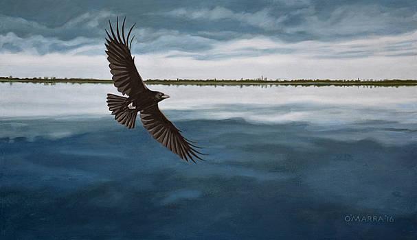 Raven Over Dark Water by Allan OMarra