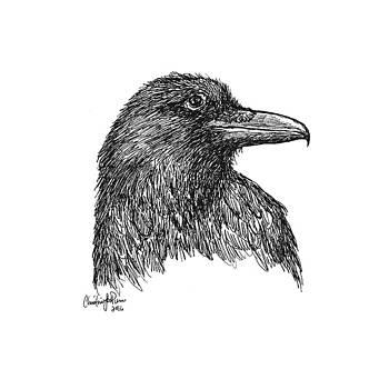 Raven Smile by Christine StPierre
