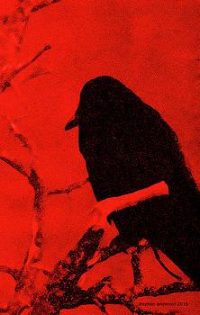 Raven by Stephen Andersen