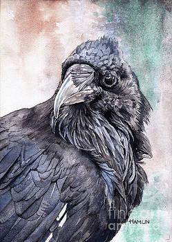 Raven Study by Steve Hamlin