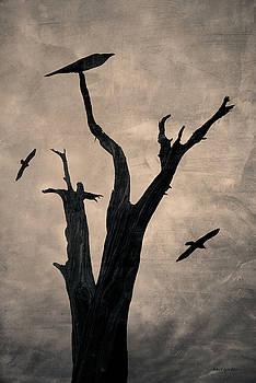 David Gordon - Raven Tree