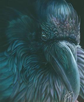 Raven by Wayne Pruse