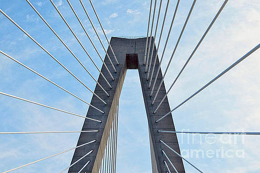Ravenel Bridge Charleston by Catherine Sherman