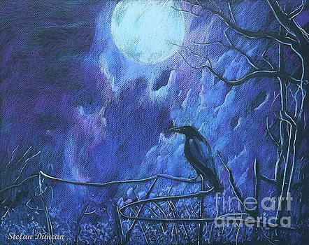 Raven's Night by Stefan Duncan