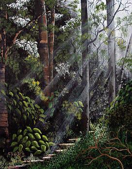 Rays by Gloria E Barreto-Rodriguez