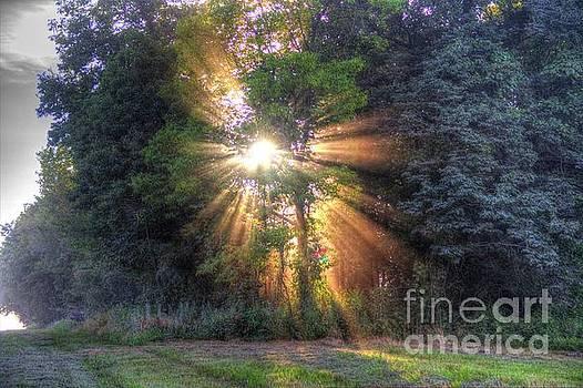 Rays of Dust by Denny Ragan