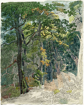 Friedrich Salathe -  Rays of Sunlight Striking a Woodland Path