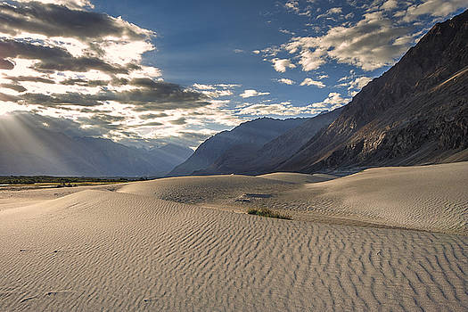 Rays on dunes by Hitendra SINKAR