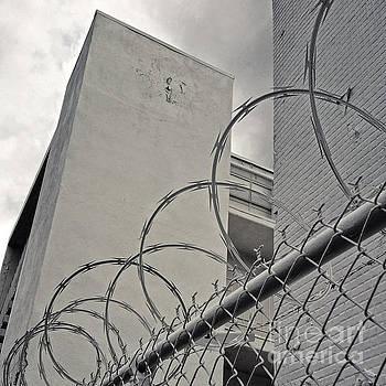 Gregory Dyer - Razor Wire