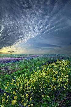 Reach for the Heavens and Hope for the Future by Phil Koch