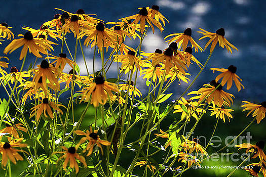 Reaching for the Blue Sky by Jale Fancey